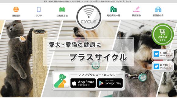 日本動物高度医療センター