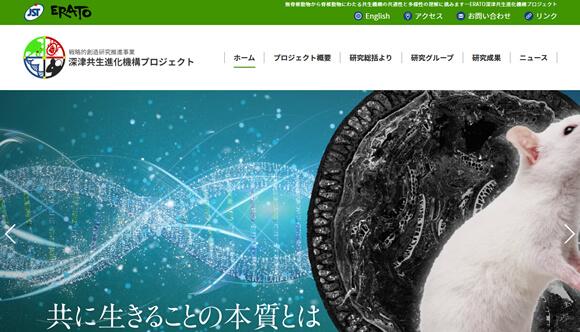 国立研究開発法人 物質・材料研究機構 ERATO深津共生進化機構プロジェクト